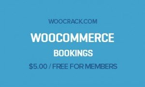 Premium WooCommerce Extensions & Themes Original