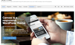 Canvas-WordPress-Theme-422x338