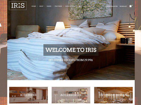 iris-800-665x450