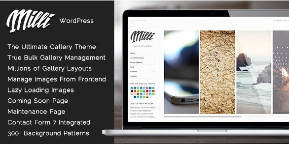 Milli - The Ultimate Photo Gallery WordPress Theme