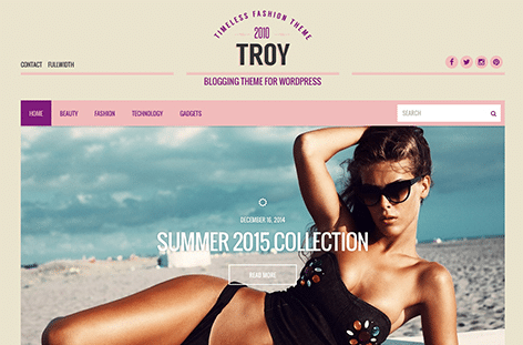 CSS Igniter Troy WordPress Theme