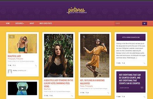 CSS Igniter Pintores WordPress Theme