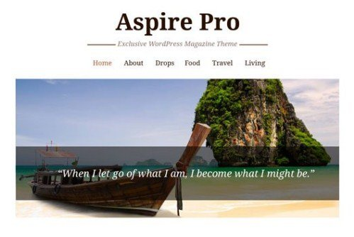 CyberChimps AspirePro WordPress Theme