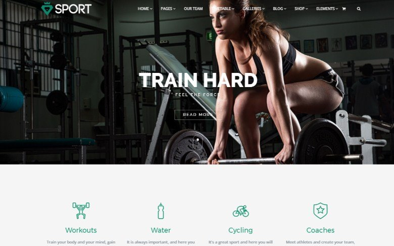 VisualModo Sport WordPress Theme