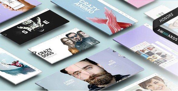 Animo – Creative & Clean Multi-Purpose WordPress Theme